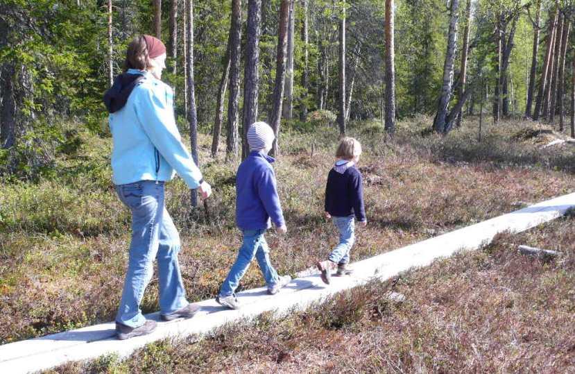 Unsere Top 3 Wandergebiete inFinnland