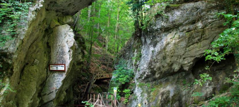 Wanderung durch dieSteinwandklamm