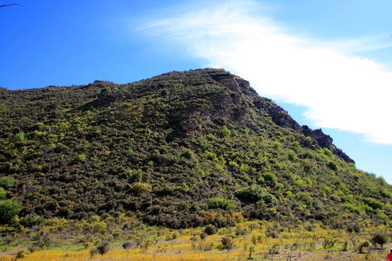 Lake Wanaka Mount Iron