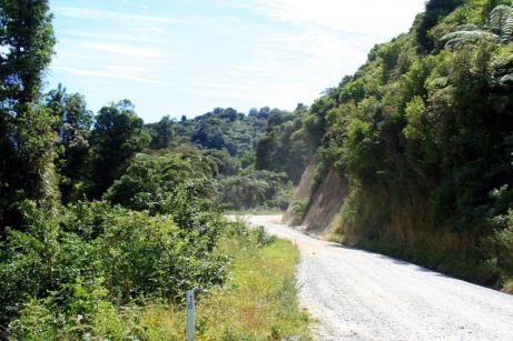 Schotterpiste nach Totaranui