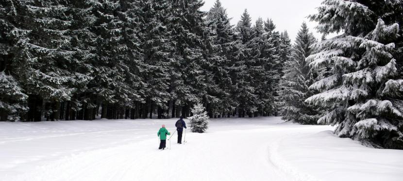 Langlaufen im Böhmerwald