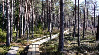 Soomaa Nationalpark, Estonia